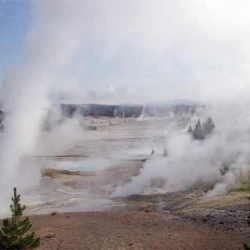 Noris Geyser Basin, Yellowstone