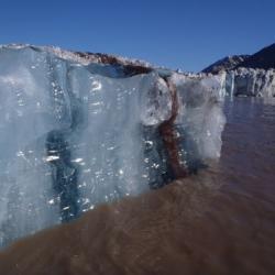 New Iceberg