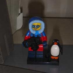 PolarTREC Polly hiding