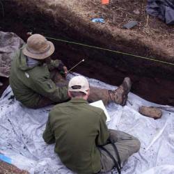 Profiling North Wall of Unit 3