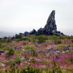 Finger Mountain