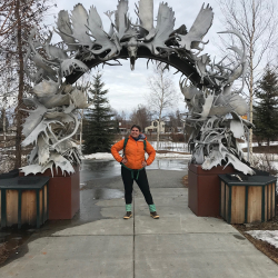 The Moose Archway