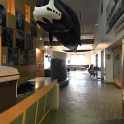 Inupiat Cultural Heritage Center