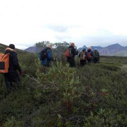 Our group hiking in the Denali Wilderness